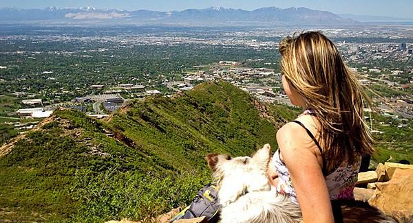 Ski Utah View
